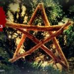 DIY Branch Ornaments