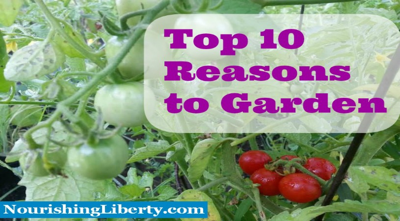 Why should you garden? Here are 10 reasons why you should garden from nourishing liberty.