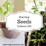Starting Seeds Indoors 101