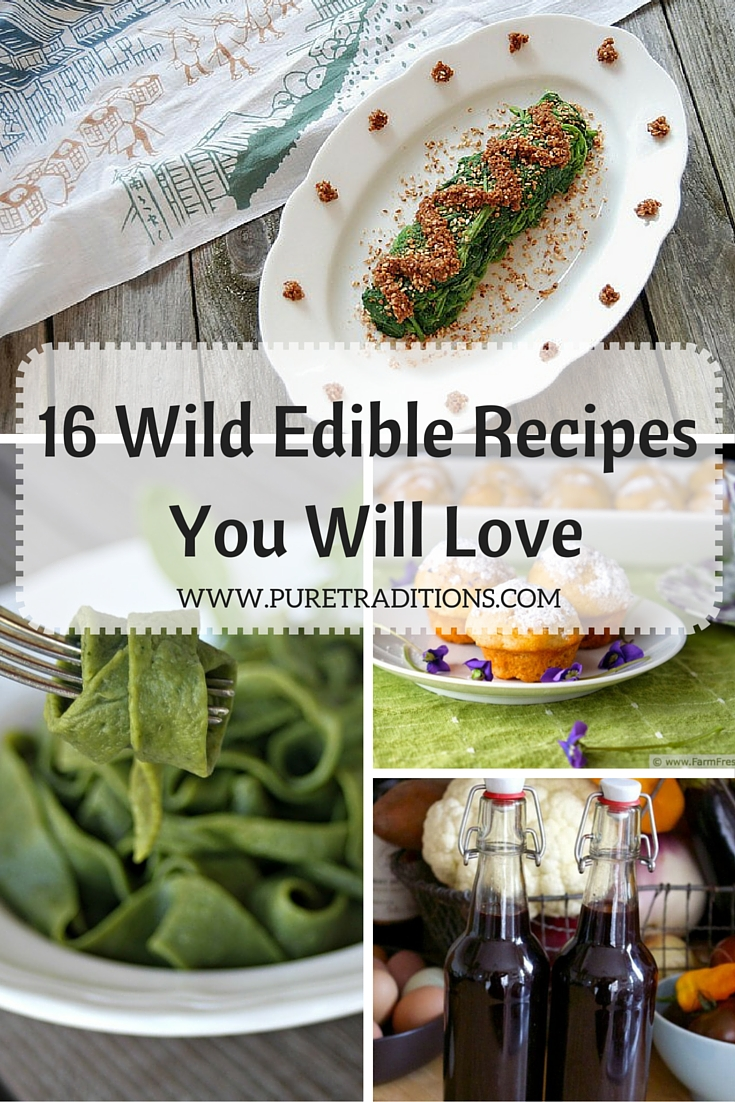 16 Wild Edible Recipes You Will Love : Pure Traditions